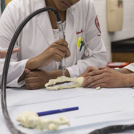Students in school of podiatry working at a table